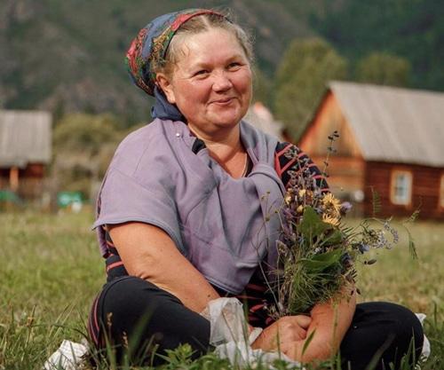 natura siberica recolección silvestre